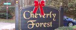 Cheverly Forest