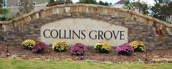 Collins Grove