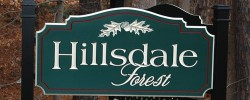 Hillsdale Forest